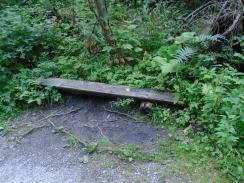 bench (800x600)